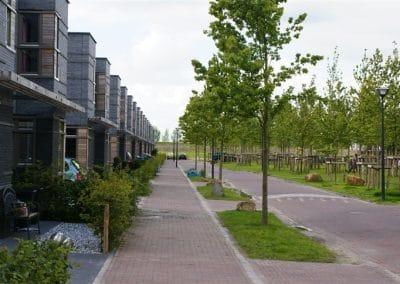 Texel Floriande