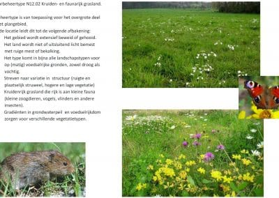natuurbeheertype jetra farm