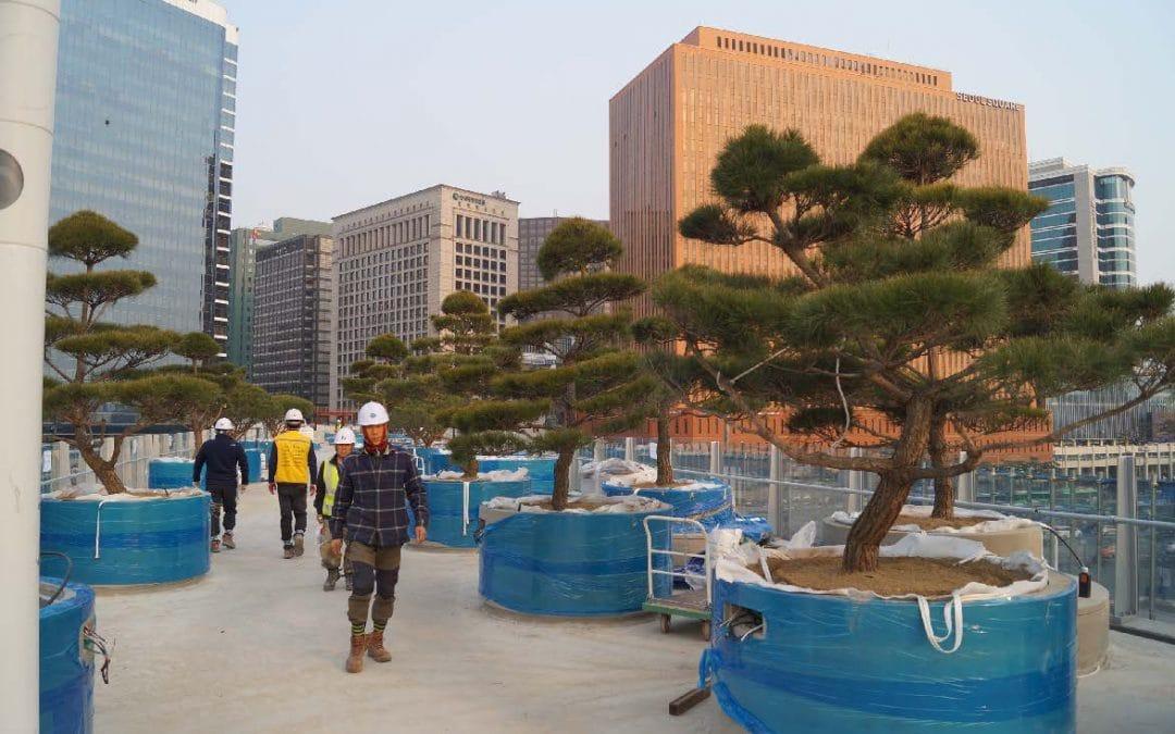 Skygarden Seoul nadert voltooiing