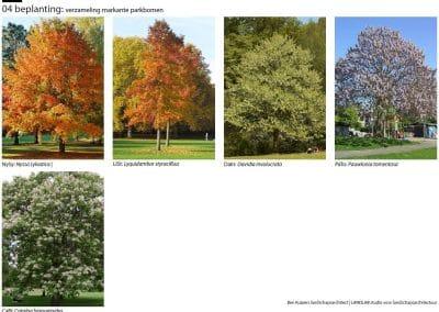 bomenplan