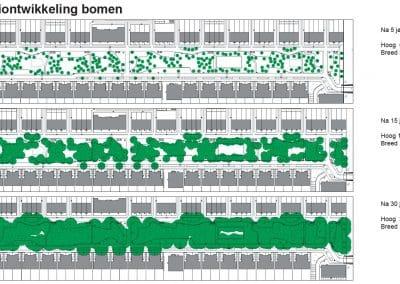 boombeplanting